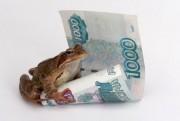 Самые странные денежные приметы