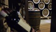 Австрия намерена сотрудничать с Россией в области виноделия и растениеводства