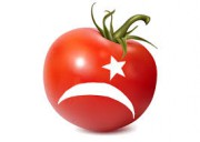 Запрет на экспорт турецких помидоров в Россию стоит два миллиарда долларов